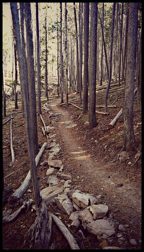 wyoming casperwyoming wy casper eadsvilletrail trail nordictrails woods path bikepath
