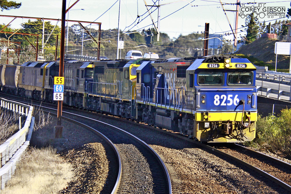 8256 leads a loaded Coalie through Leura by Corey Gibson