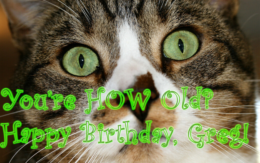 New To You >> Happy Birthday Greg! | What a difference a week will make ...