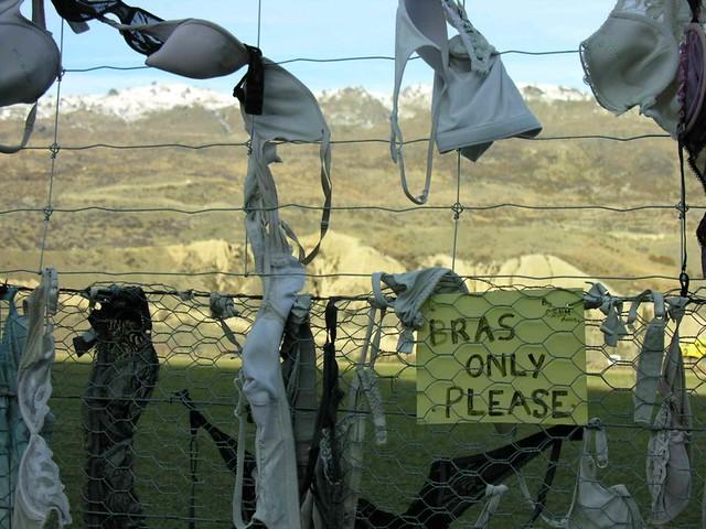 the 'bra fence', Cardrona Road, Central Otago, NZ