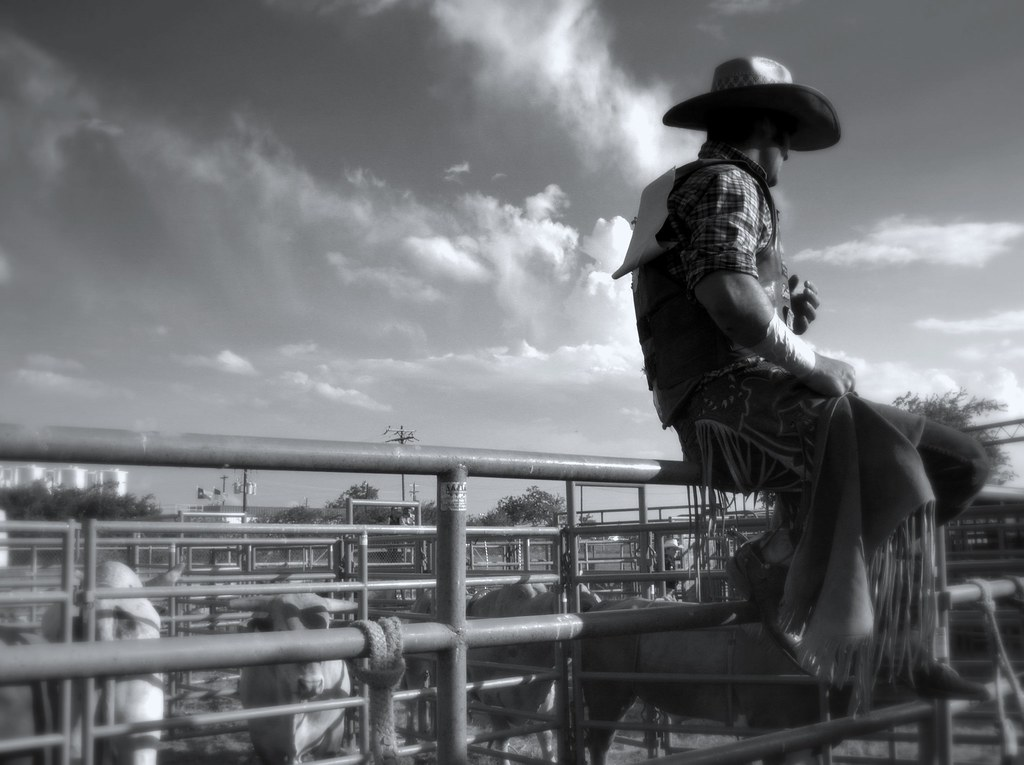 Chaps Rodeo Cowboy Texas Competitor Hat Bulls Pen 63823