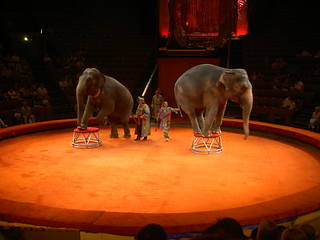 The World Famous Moscow Circus | by Andrew Gatt