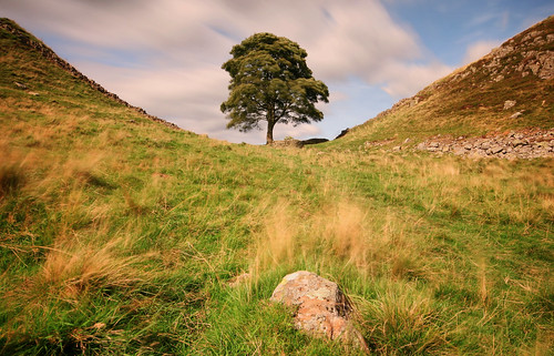 sycamore gap sycamoregap hadrians wall hadrianswall tree northumberland northumbria england uk united kingdom national park english great britain british long exposure september summer travel trip sky blue clouds green grass historic rock landscape view scenery scenic outdoors nature countryside light windy blur canon 70d sigma