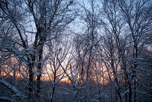 newyork sunrise westchestercounty poundridge sailorswarning northernwestchester snowsunrise sonjalovas realestateisms livinginwestchester