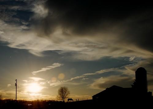 sunset horse sun tree sc silhouette 365 spartanburg 2011 d7000