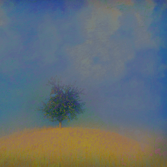 tree on the sweet hill