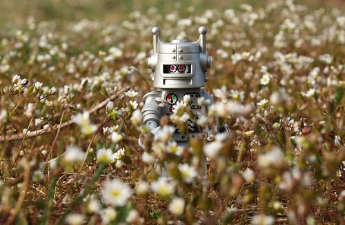 robot in spring | by Johnson Cameraface