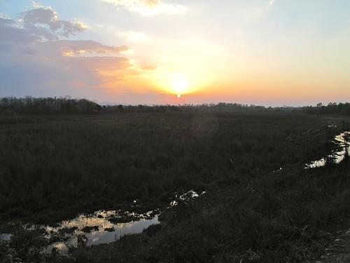world park nepal sunset forest asia national chitwan 2011