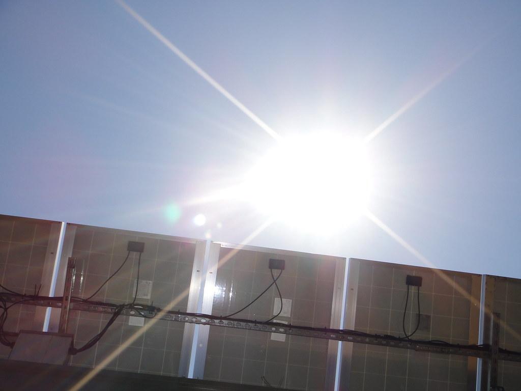 Sunshine above solar panels at Okra Paradise Farms