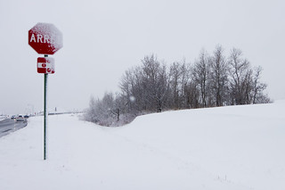 Stop Winter... Please... Really | by haban hero