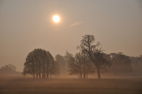 morning trees ireland light sky dublin irish sun beautiful misty club sunrise golf landscape dawn foggy clear hazy cartonhouse cartonhousedublin