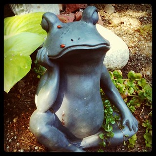 "Philosopher Frog ponders, ""Are they still called ladybugs if they have man-bits?"" 