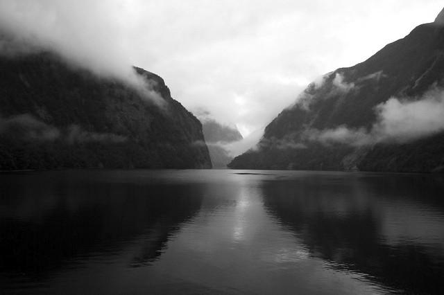 Grey Morning in Doubtful Sound
