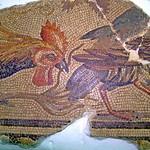 114. Museu de Ptolemaida. Mosaic amb aviram