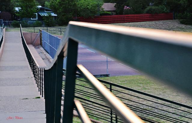 Fence Friday