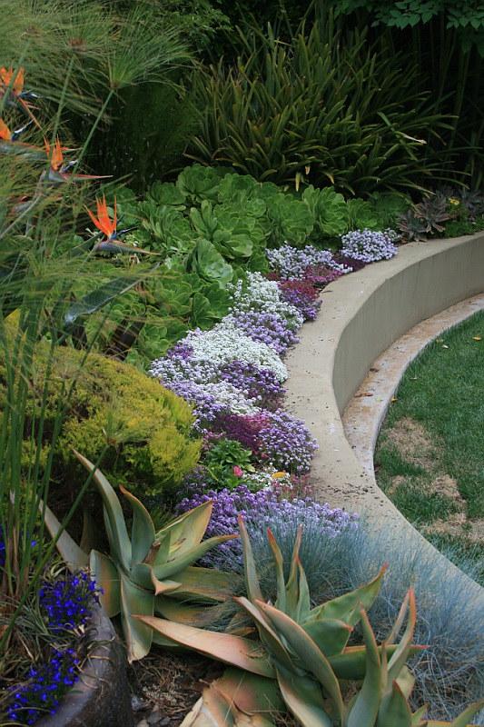 Raised border at Burgmann garden backyard