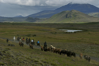 Riding tours in Iceland with Hekluhestar | by Hekluhestar