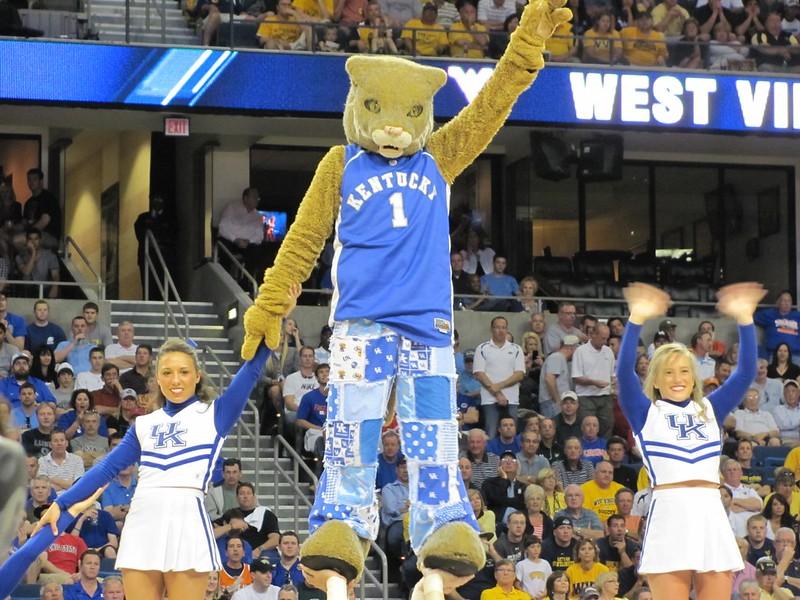 Wildcat mascot and cheerleaders