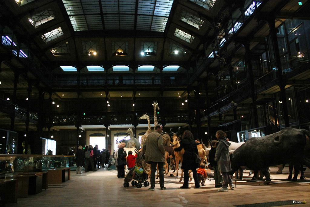 Galerie De L Evolution Jardin Des Plantes La Grande Gale Flickr