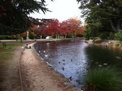 Queen Elizabeth park, Masterton, Easter Sunday 2011