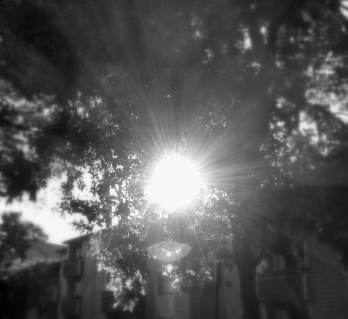 sunlight in black and white | by Innov8social