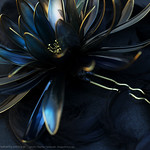 2011 黒鳥 簪 kanzashi 「濡羽」 02