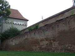 Targu Mures 2010-29