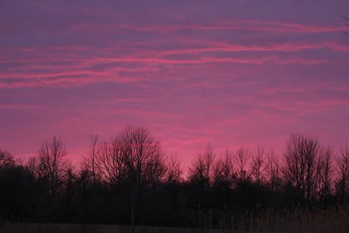 benderpark dusk sunset red sky oakcreek wisconsin pink milwaukeecounty park nature scene trees evening spring