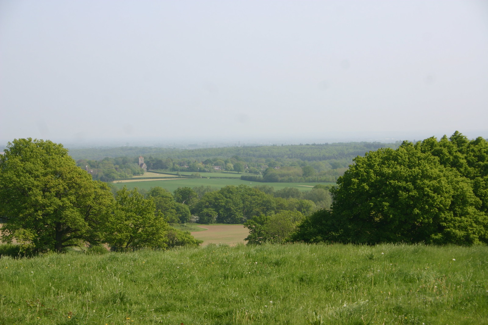 Weald and church