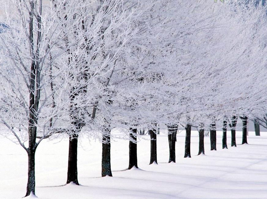 Ottawa Ontario Canada March 2011 — Winter Scenes 121 | Flickr