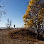 Fall in Beacon