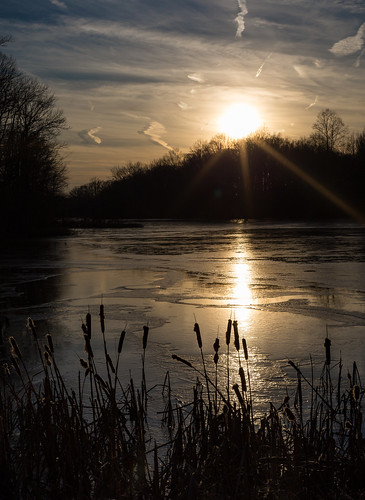 catoninetails davidsonsmillpondpark landscape sunset winter silhouette reflection frozenlake sky ice cattails water frozen clouds northbrunswicktownship newjersey unitedstates us