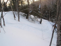 powder tracks