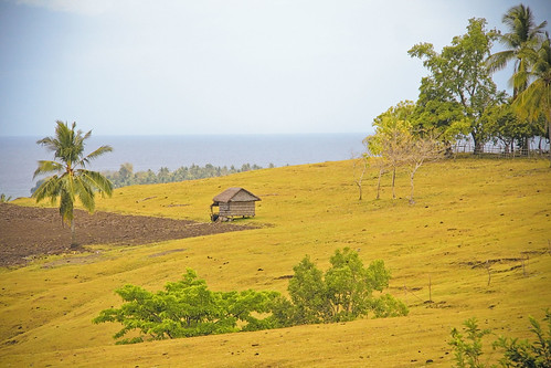 field countryside philippines hut ph phl tablas ferrol romblon lenareh tablasisland mimaropa regionivb
