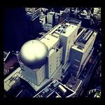 セルリアンタワーから見おろしてみた