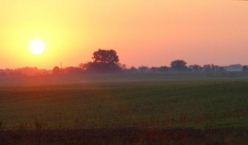 morning ohio summer sun tree field sunrise dawn farm sony july alpha a230 2011 fairfieldcounty stoutsville