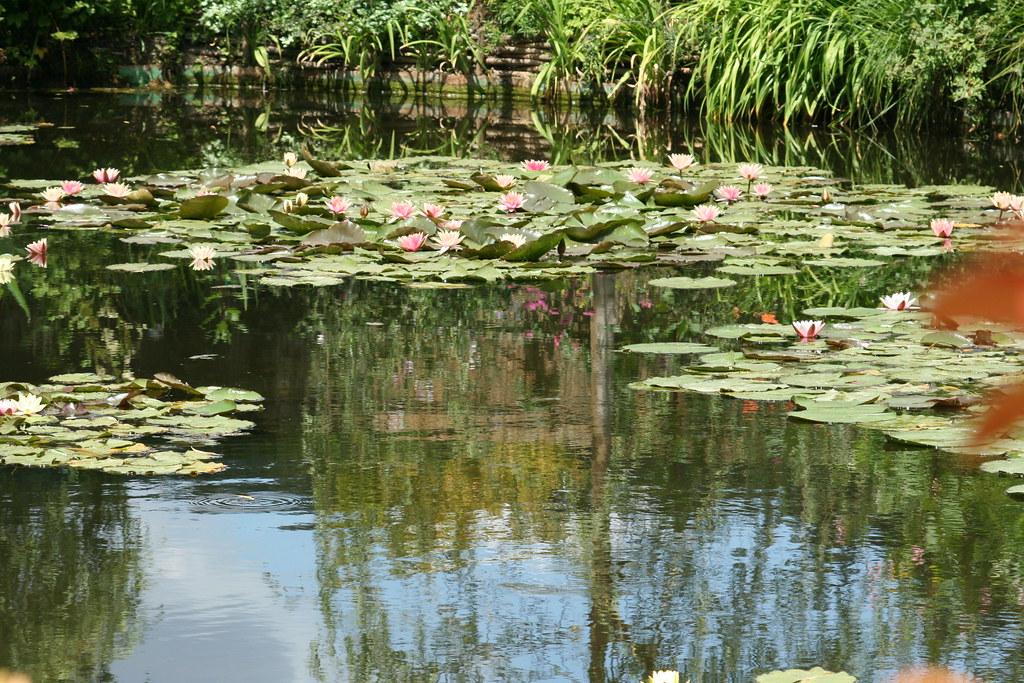 Les Jardins des Claude Monet