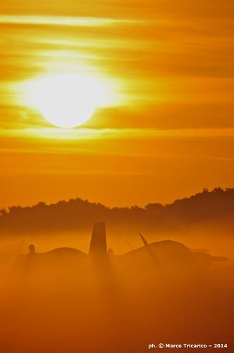 fog aviation airplanes airshow aviazione aerei sunnfun aviationphotography fotografiaaeronautica