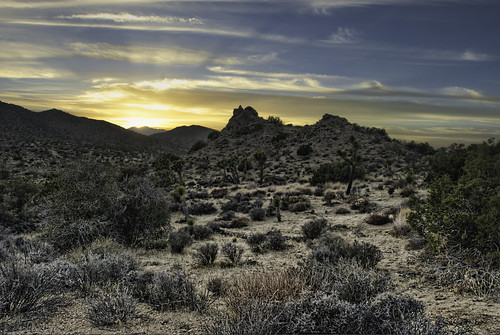 california sunset nikon day desert cloudy joshuatree daytime hdr topaz joshuatreenationalpark sanbernardinocounty photomatix d80 robertvanhyning