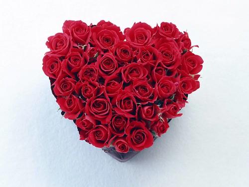 Love Flowers | Love Flowers By Anees Prince | Anees Amjad ...