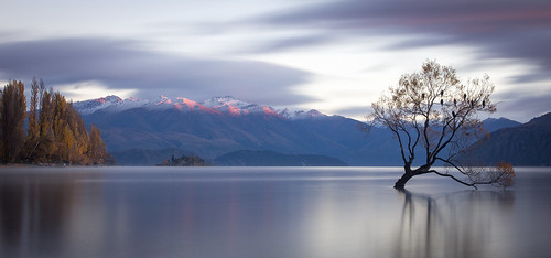 mountains tree water sunrise wanaka