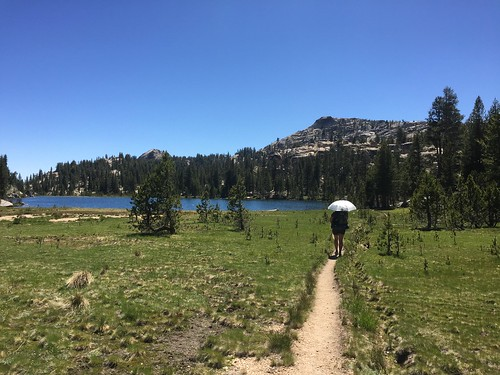 PCT: Day 77