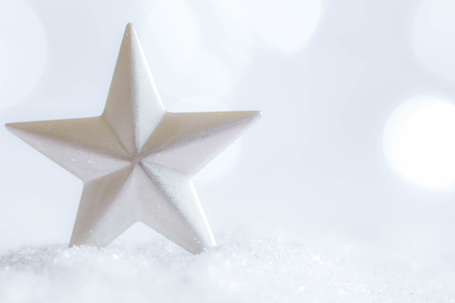 354/366: The star of the snow [Explored]