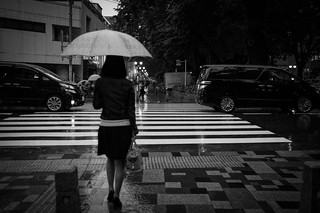 A Rainy Day in June / 六月の雨 #1   by marumeganechan