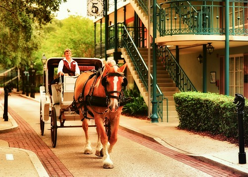 Golden Hour at French Quarter - Horse and Carriage | by Express Monorail