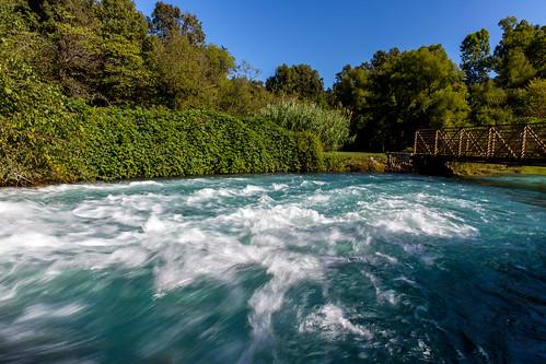 statepark usa water spring pond ar rapids arkansas springriver mammothspring