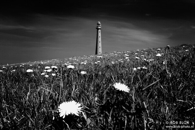 Lighthouse-BPX3088bw