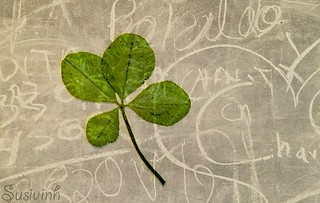 Luck - 141:365 | by susivinh