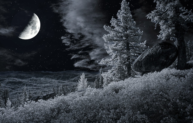 Half-moon over Sequoia National Forest - IR Duotone 2