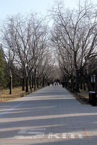 Templo do Céu (Tiantán) em Beijing - China, Mar2012 | by Ana Paula Hirama